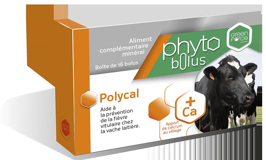 PHYTOBOLUS POLYCAL
