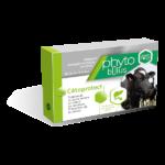 Prévention de la cétose avec PhytBolus CETOPROTECT